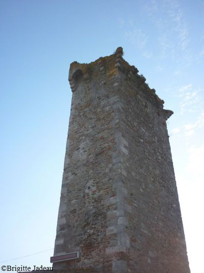 chateau de Saissac 84
