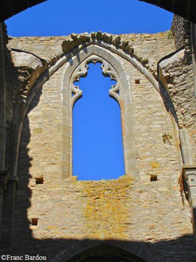 Abbaye de Villelongue 010