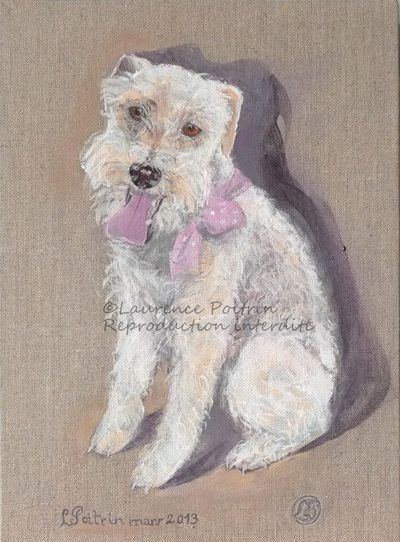 FOX-TERRIER