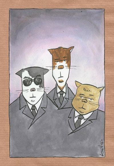 Reservoir-Cats.jpg