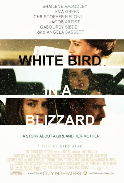 White-bird-in-a-blizzard.jpg