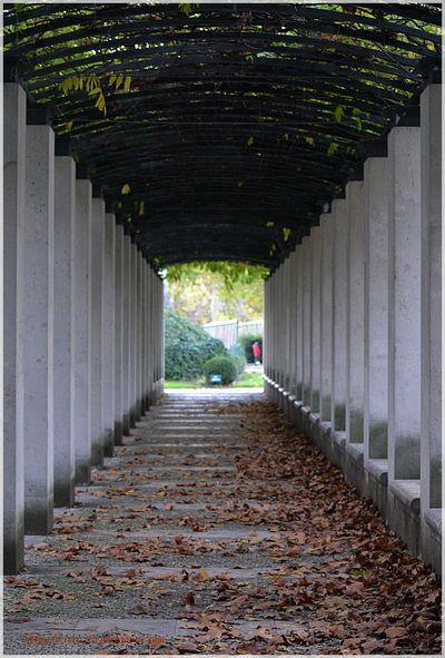 Bercy 7 novembre 2012 7