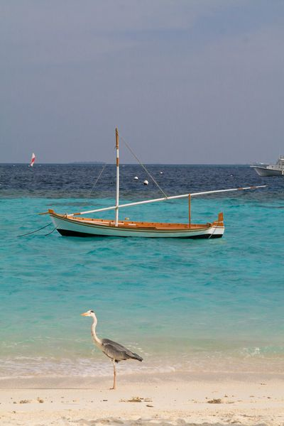 Maldives 2 Tour27