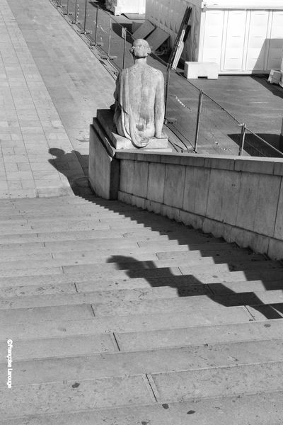 Solitude-Trocaderoc20.09-2013-Francoise-Larouge.jpg