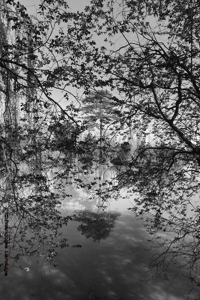 bord-du-cher04©14-04-2013-françoise larouge