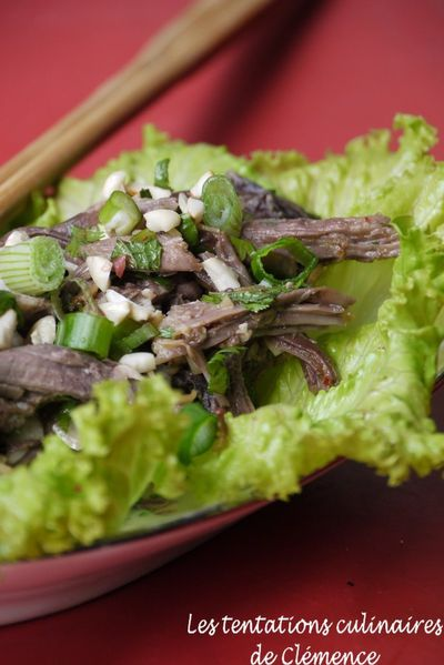 salade-d-effiloche-de-boeuf-a-la-thai2.jpg