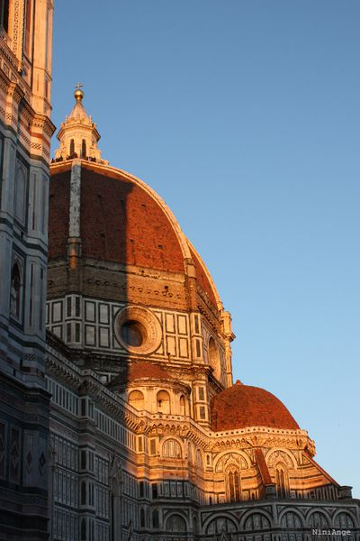 florence 8603