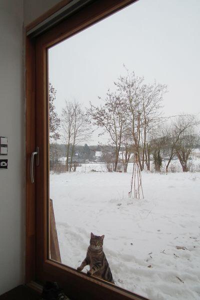 premiere neige gypsy