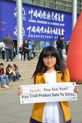 Anti produits issus de phoques 2014 7