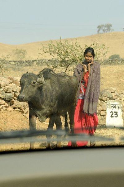 _DSC3675--3-RouteKumbhalgarh.JPG