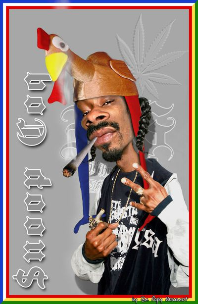 Snoop Coq