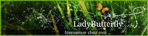 Le blog d'une lady (ITW 28 inside)