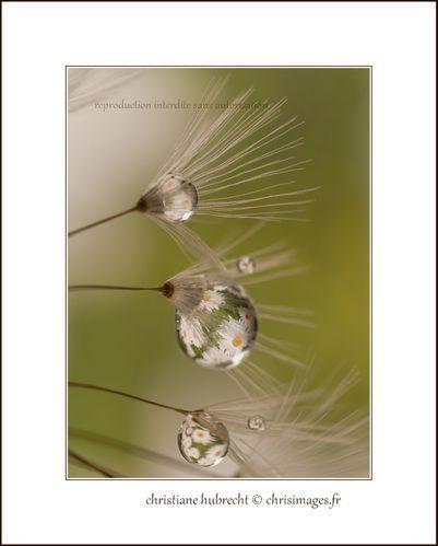 Annee-2012-3288-1280.jpg