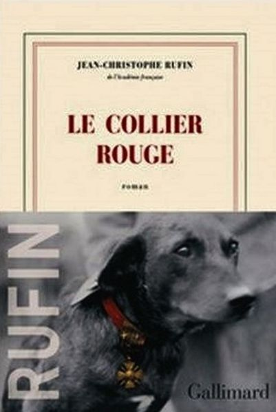 colier-rouge--1024x768-.JPG