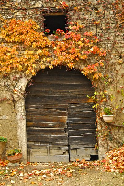 morestel automne