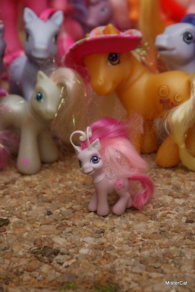 mon petit poney hasbro my little pony (29)