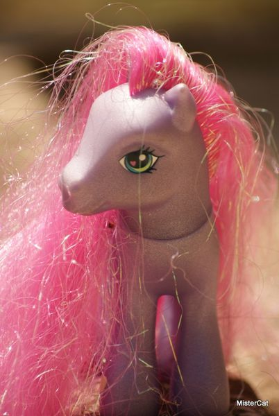 mon petit poney hasbro my little pony (3)