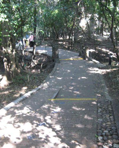 Le 18 décembre 2010, vers San Cristobal de las Casas 018