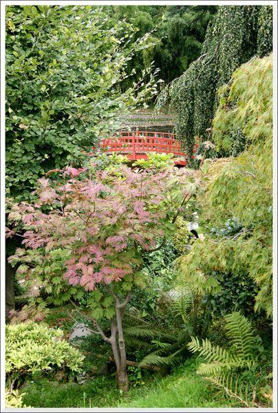 2013-10-06-Jardin-Albert-Kahn-Boulogne---69-.JPG