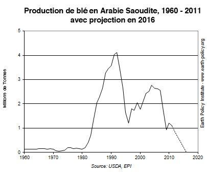 production-ble-arabie-saoudite.jpg