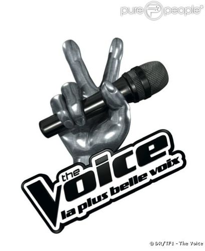 791473-the-voice-la-plus-belle-voix-sur-tf1-637x0-3