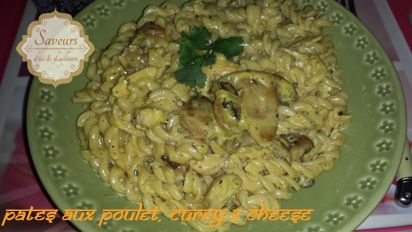 pates-poulet-curry-and-cheese3.jpg