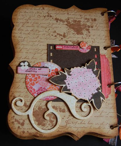 mini-album-kit-fee-du-scrap-juin-2010 3928 500 pixels