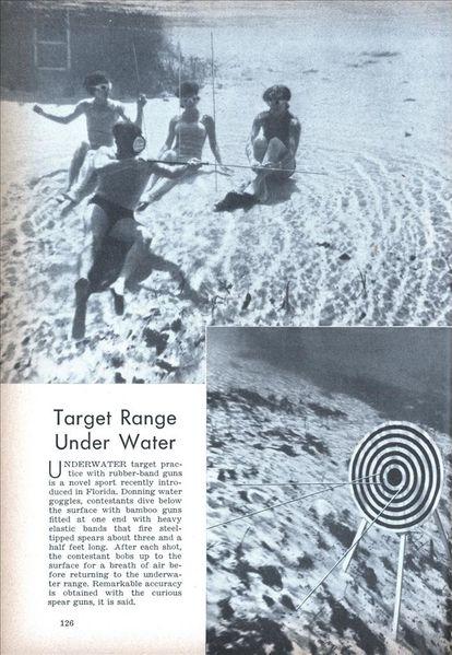 xlg_undwerwater_target.jpg