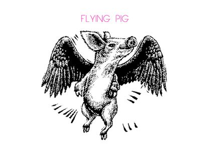 flying pig 2