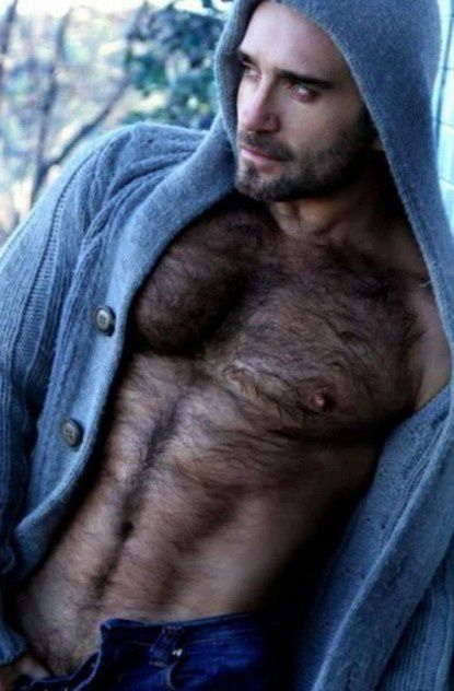 PINGAY-HOMME-OURS-TRES-POILU-ULTRA-SEXY.jpg