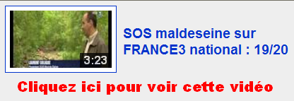 videos-maldeseine-01.PNG