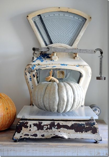 scale-with-pumpkins_thumb-2-.jpg