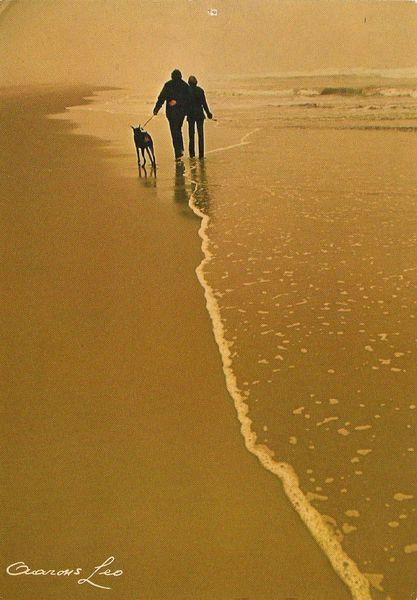 Cartes postales Lever et coucher de soleil aaaaaaa amoureux