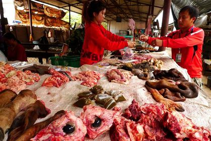 Morning-Market-Luang-Namtha--4---Small-.JPG