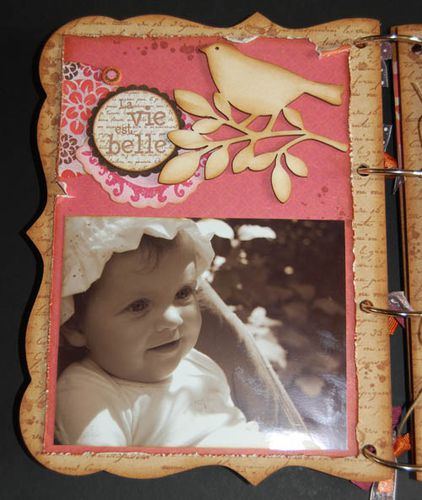mini-album-kit-fee-du-scrap-juin-2010 3915 500 pixels