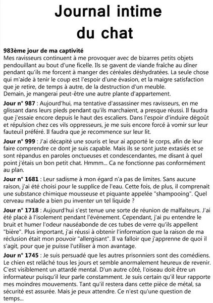 journal intime 2