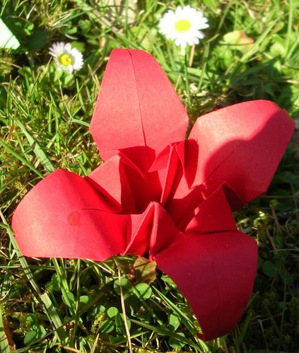 Origami-002.JPG