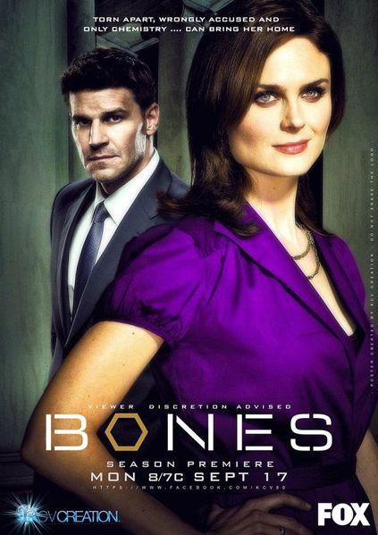 bones_season_8.jpg