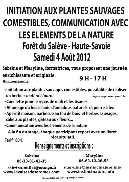 affiche-4-aout-communication-saleve.jpg