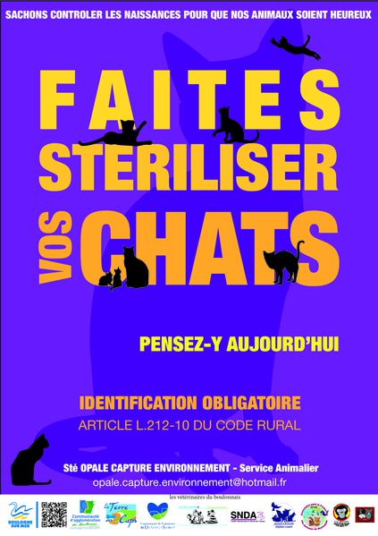 Affiche-Sterilisation-des-chats.jpg