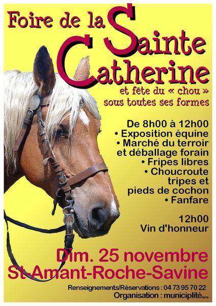 brouillon-affiche-Sainte-Catherine-2012.jpg