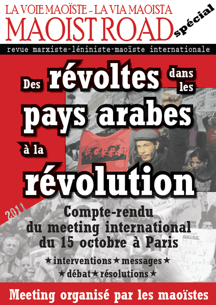 MR-special-revolte-arabe.png
