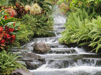 cascade Chute d'eau1