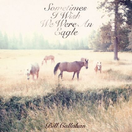 Bill-Callahan-Sometimes-I-Wish-We-Were-An-Eagle.jpg