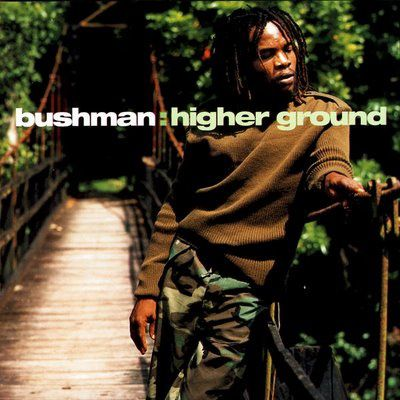 Bushman-Higher-Ground.jpg