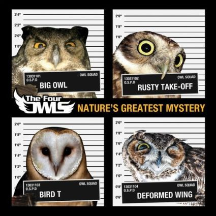 The-Four-Owls-Nature-s-Greatest-Mystery.jpg