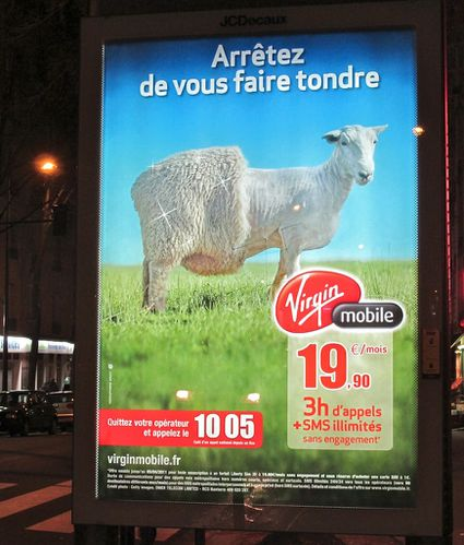 Virgin Mobile affiche mouton tondu