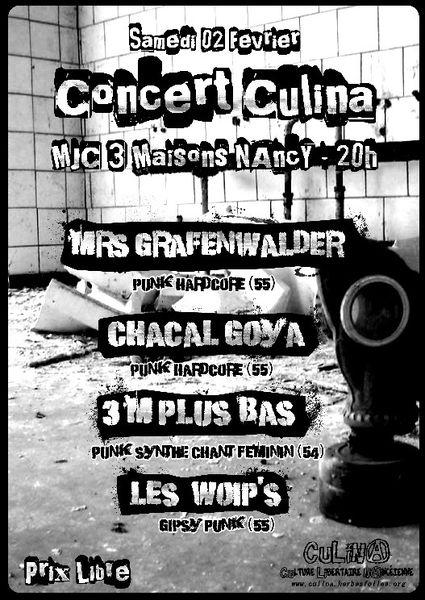 Concert-Culina.jpg