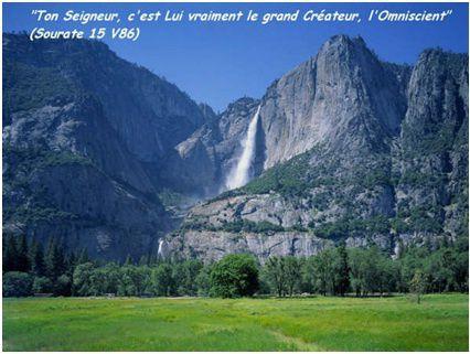 Verite-sur-Homme-Djinn-Ange.jpg