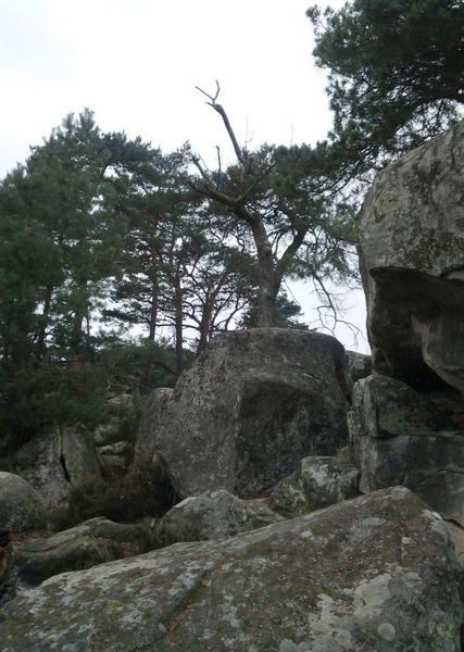 Sentier-Denecourt-05.jpg